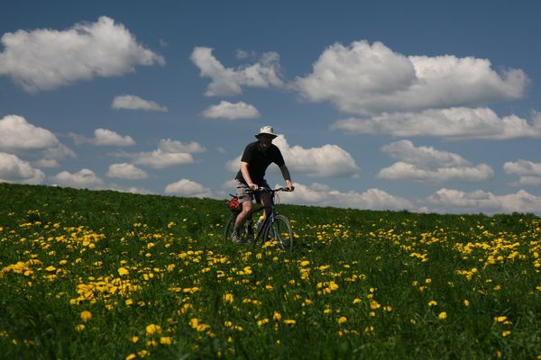 cycling through meadow near Moscow